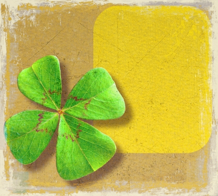 Old paper with four-leaf clover and space for text photo