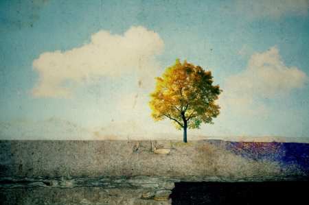 Surreal landscapes with single tree