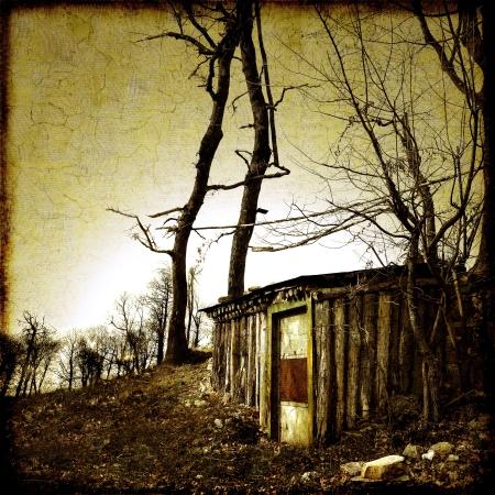 Piccolo rifugio nella foresta