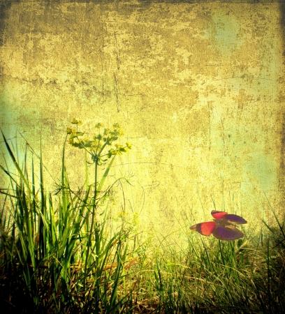 herbs wild: Grunge imagen de hierbas silvestres con mariposa