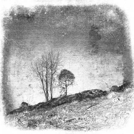 Vintage rural illustration