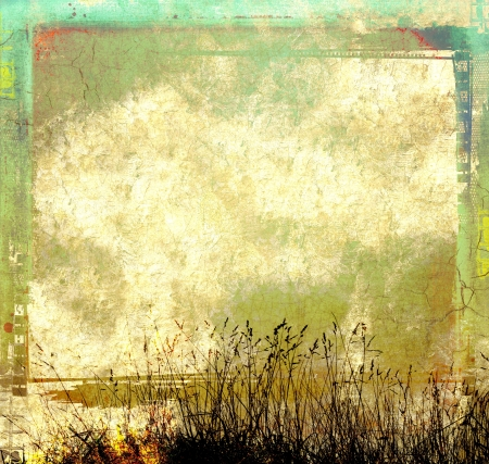 Grunge abstract background with wild herbs Stock Photo