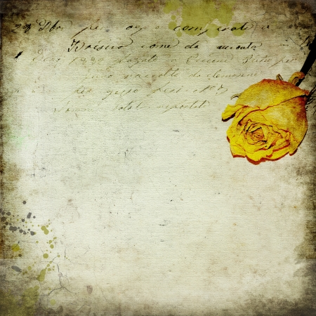 write a letter: Vintage paper background with rose and old writing