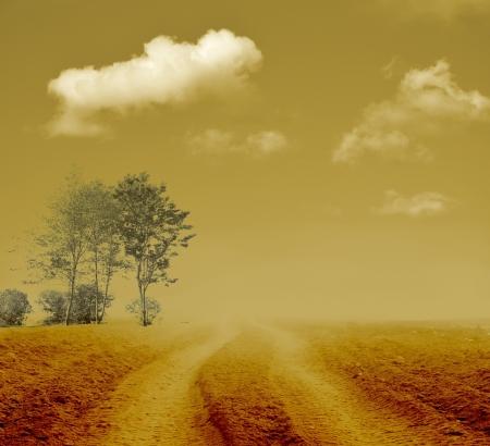 Vintage nebbioso percorso verso il nulla Archivio Fotografico