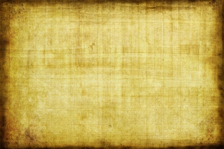 Grunge papyrus background Stock Photo - 17013243