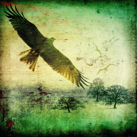 Grunge rural landscape with birds in flight photo