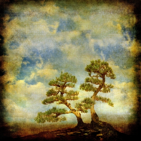 Two pines on vintage sky background.