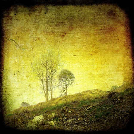 Grunge rural landscape with group of trees photo
