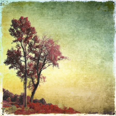 Grunge red trees background in evening Stock Photo