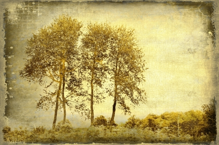 bleached: Grunge sepia background with trees Stock Photo
