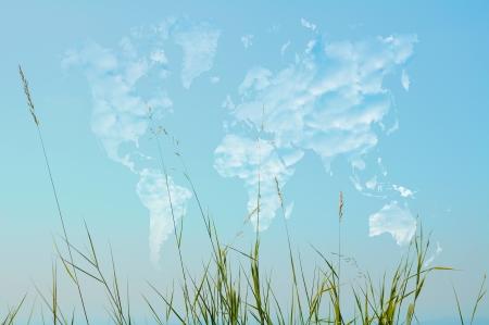 herbs wild: Hierbas silvestres en mapa del mundo en forma de nubes Foto de archivo