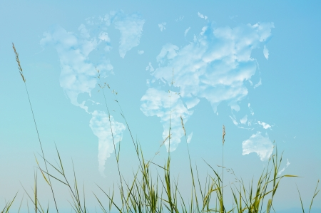 Wild herbs on world map shaped clouds photo