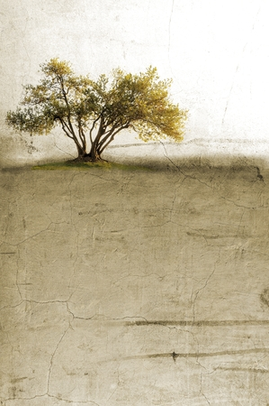 surreal landscape: Surreal landscape with single tree in sepia tones Stock Photo