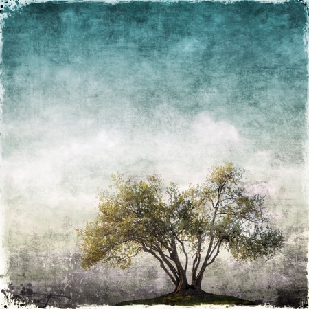 tree of life silhouette: Grunge landscape with single tree Stock Photo