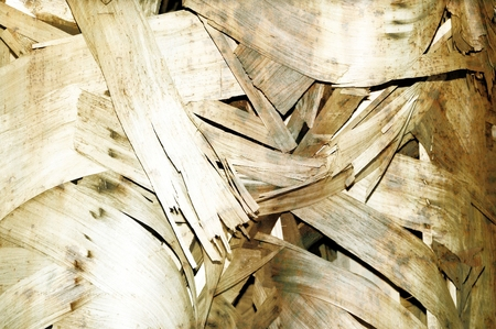 Fragments of wood for texture and background