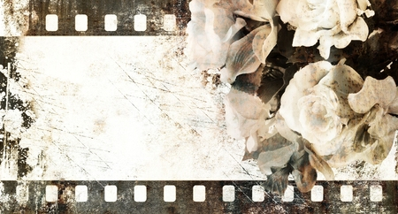 Annata telaio striscia di pellicola con rose