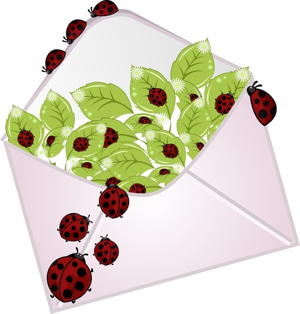 The letter with a flowers and ladybugs Vector