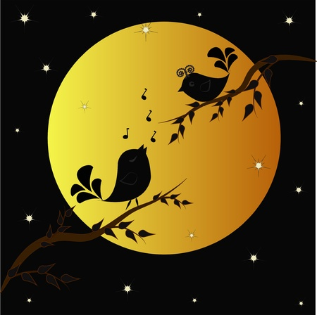 couples outdoors: Singing birdies on branches under the moon in the night from stars