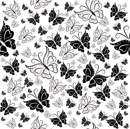 Wall-paper from black and white butterflies on a white background