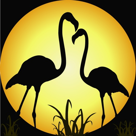Outline of two flamingos against the moon Vector