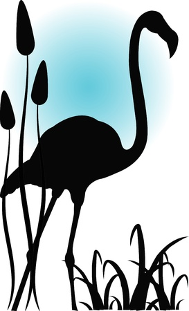 Outline of a flamingo in water Vector