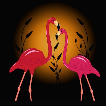 enamoured: Two enamoured pink flamingos against the moon Illustration