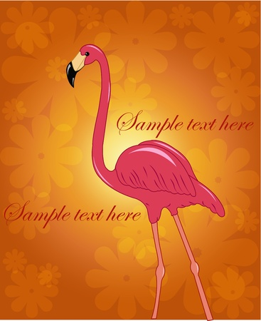 Beautiful pink flamingo on a flower orange background Vector