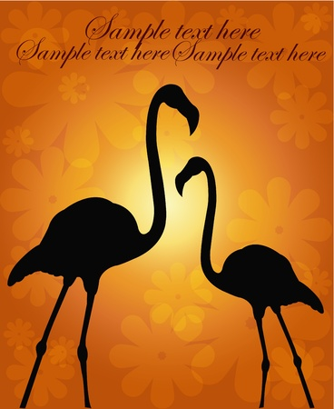 Outline of two flamingos on a flower orange background Vector