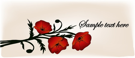 Bouquet from red poppies on a white background Vector