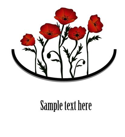 contraste: Ramo de amapolas rojas sobre un fondo blanco