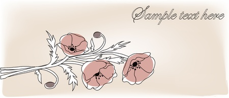 Bouquet from red poppies on a white background Stock Vector - 13323994