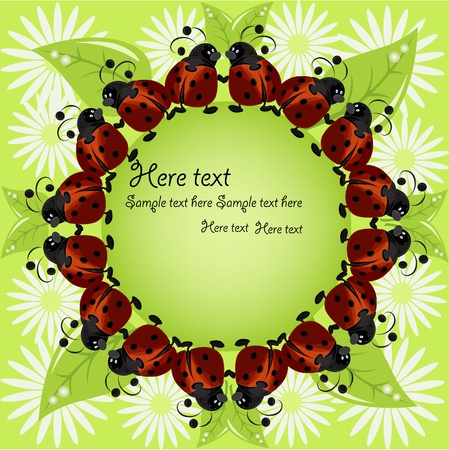 Card sample with ladybugs and a flowers Vector