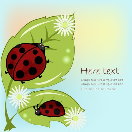 leaflets: Two ladybugs on leaflets with camomiles on a blue background