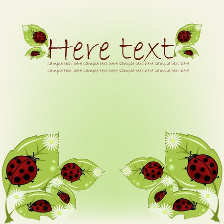 Ladybugs on leaflets with camomiles on a green background Vector