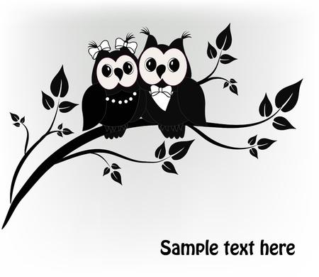 civetta bianca: Due bianco e nero su un albero nero, gufo