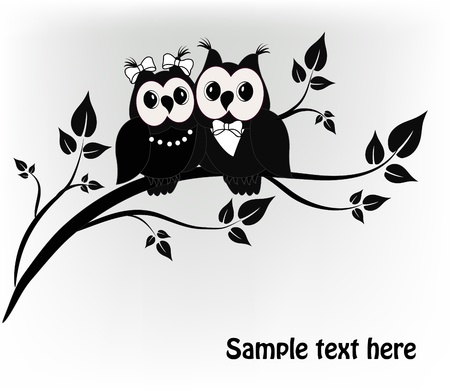 young tree: Two black and white on a black owl tree Illustration