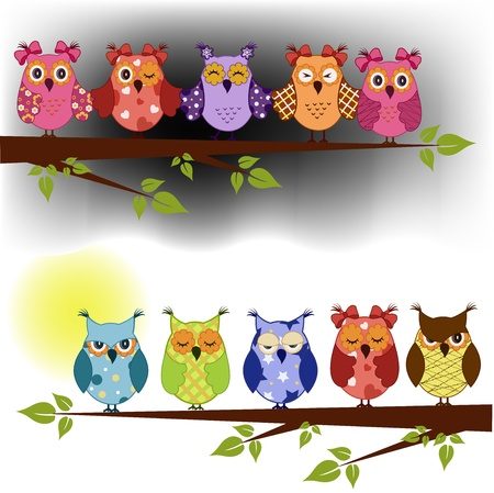 limb: Family of owls sat on a tree branch at night and day. vector background