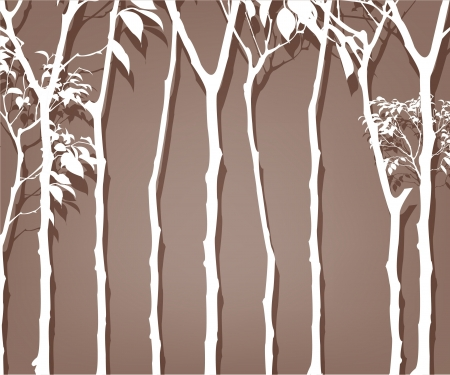 The outline of an trees Vector