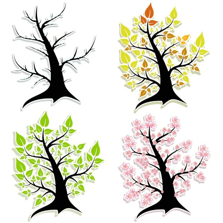 Four of the tree  Seasons  Vector