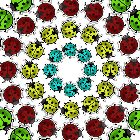 round: Beautiful, colorful ladybugs on white background