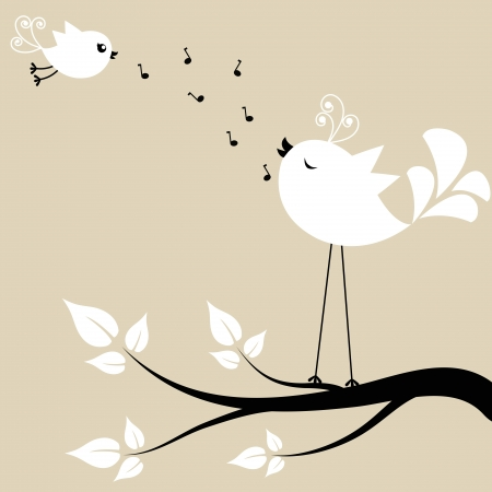 black bird: Two white birds on a branch