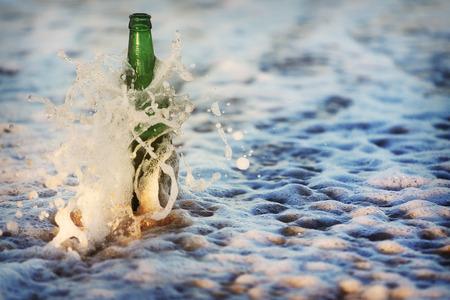 tipple: Seagull on the beach. Bird walks in the sand. Stock Photo