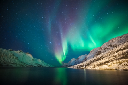 Northern lights  at Ersfjordbotn, Tromso, Norway