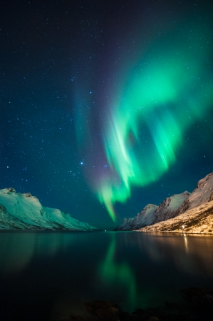 the aurora: Northern lights  at Ersfjordbotn ,Tromso, Norway