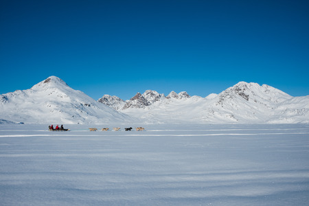 Dog sledding in Tasiilaq, East Greenland