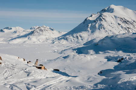 greenlandic: Winter snowy landscape of Kulusuk, small village in Greenland