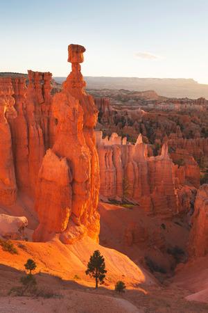 Bryce Canyon National Park, Utah, USA Imagens
