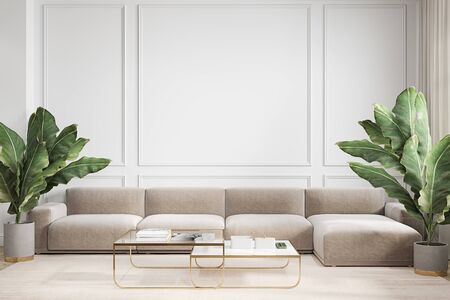 Modern minimalism white interior with couch, sofa, palm plants and coffee tables. 3d render illustration mock up.