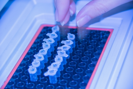chain reaction: The polymerase chain reaction  PCR  machine  Stock Photo
