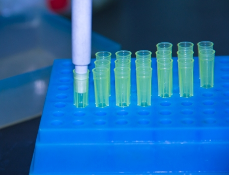 Adding samples with finnpipette This is the step of adding enzyme Stock Photo - 17477076